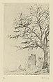 James Ensor, Acacia, print, second state, 1888, Prints Department Royal Library of Belgium, S. II 63755.jpg