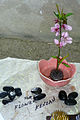 Japanese Gardens Gift Shop offerings 3.jpg