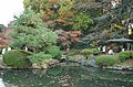 Japanese Traditional Garden, Shinjuku Gyoen(Shinjuku Imperial Garden) - 日本庭園, 新宿御苑 - panoramio (1).jpg