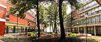 Facultad de derecho de la universidad nacional aut noma de for Derecho de paternidad