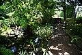 Jardim Botânico do Faial, 4 concelho da Horta, ilha do Faial, Açores, Portugal.JPG
