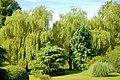 Jardin de Pierrefitte en Cinglais- secret.jpg