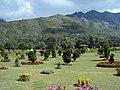 Jawaharlal Nehru Memorial Botanical Gardens, Srinagar 21.JPG