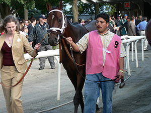 Belmont Stakes, June 10th 2006, winner Jazil.
