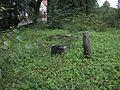 Jedwabno - cmentarz z I WŚ (05).jpg