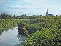 Jegrička, park prirode, Zmajevo 08.jpg