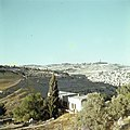 Jeruzalem Gezicht op de Olijfberg vanaf de berg Zion, Bestanddeelnr 255-9349.jpg