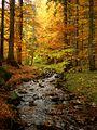 Jeseň v Slaskej - panoramio.jpg