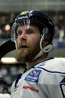 Elitserien 2007 03 03