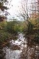 Johns Creek (Chattahoochee River) at Findley Road, Nov 2017.jpg
