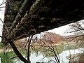K-híd, Óbuda50.jpg