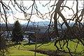 Kastanie - panoramio (1).jpg