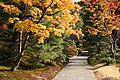 Katsura Rikyu (3263820577).jpg