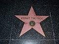 Kermit the frog hollywood walk of fame (6917430870).jpg