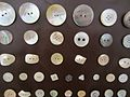 Knoflíky perleťové.jpg