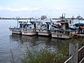 Korea-Sokcho-Squid boats on Cheongchoho Lake-01.jpg