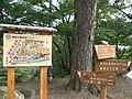 Koseicho, Okazaki, Aichi Prefecture 444-0052, Japan - panoramio (1).jpg