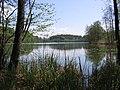 Kressbronn - Schleinsee See.jpg