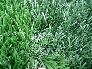 Artificial turf surface of synthetic fibers made to look like natural grass