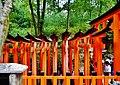 Kyoto Schrein Fushimi-Inari-taisha Torii 29.jpg