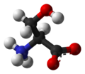 L-Serine-zwitterion-3D-balls.png