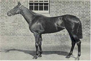 La Fleche (horse) British-bred Thoroughbred racehorse