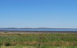 Lake Colac - Lake Colac, in January 2010, with historically low water levels