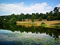 Lake at Chartwell - geograph.org.uk - 228808.jpg