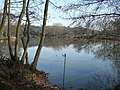 Lake at Old Bury House - geograph.org.uk - 328545.jpg