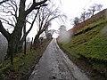 Lane near Cwm Clyd Isaf - geograph.org.uk - 629194.jpg