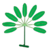 Leaf morphology type palmately-compound.png