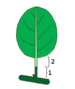 Leaf morphology type unifoliolate.png