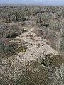 Lepidium papilliferum slickspot habitat in SW Idaho.jpg