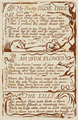 Life of William Blake (1880), Volume 2, Songs of Experience - 3 poems.png