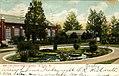 Lily Pond, Shaw's Garden (NBY 15351).jpg