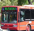 Linea 61.jpg