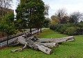 Linear Park inside Wolverhampton Ring Road - geograph.org.uk - 1562031.jpg