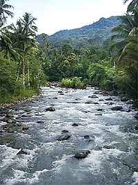 Sosiologi Lingkungan Wikipedia Bahasa Indonesia Ensiklopedia Bebas
