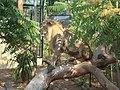 Lion Cap Ferrat.JPG