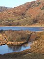 Little Langdale Tarn - geograph.org.uk - 667134.jpg
