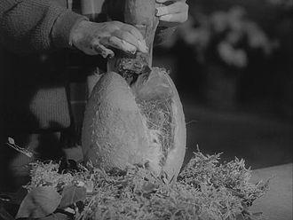 Кровожадное растение из фильма «Магазинчик ужасов»