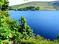 Llyn Celyn Reservoir - geograph.org.uk - 1350520.jpg