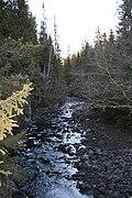 Lomma river.jpg