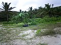 Long Beach - Tinian - panoramio.jpg