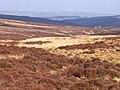 Longtae valley - geograph.org.uk - 1262199.jpg