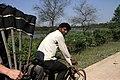 Lumbini-24-Fahrradrikscha-2013-gje.jpg