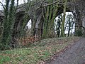 Lydford Viaduct - geograph.org.uk - 1090025.jpg