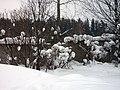 Lyovintsy, Kirovskaya oblast', Russia, 612079 - panoramio (71).jpg
