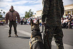MCAS Yuma's K-9 Unit Demonstrates Their Abilities at Local Dog Show 150123-M-TH017-888.jpg