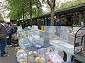 Madárpiac - Cité, Párizs, 2016.05.15 (5).jpg